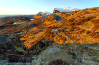 Trotternish Ridge (4)