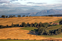 West Lothian Harvest (2)
