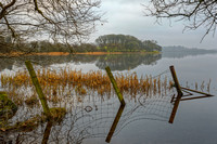 Menteith Tranquility
